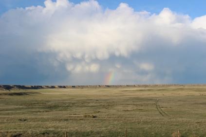 A rainbow over the plains.